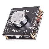 LeuMuas Amplificador Mini Bluetooth 2.0 Desktop Receiver Amplificador Audio estéreo para el hogar