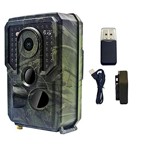 JINGLING Mini Wildkamera, 1080P Wildkamera Mit Nachtsicht Wasserdichter Wildmonitor, IP54 Wasserdichtes Design, Infrarotsensoren Wildkamera