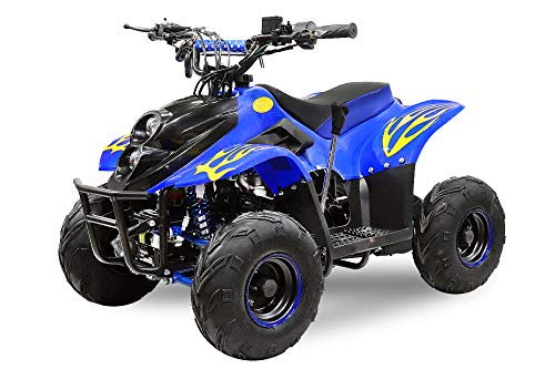 Motors Bigfoot 125cc Midi Quad 6 inch automatisch + RG ATV kinderquad ATV Bike Pocketquad zwart