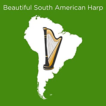 Beautiful South American Harp