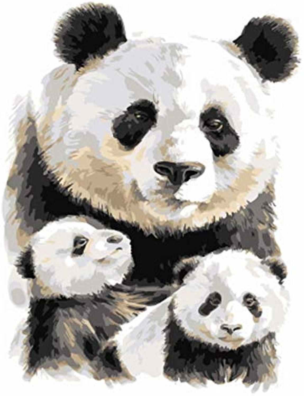 CZYYOU DIY, Ölgemälde Durch Zahlen Malen Nach Zahl Für Hauptdekorölbild, Malereipanda, Ohne Rahmen, 40x50cm B07PX2HNDY | Verschiedene