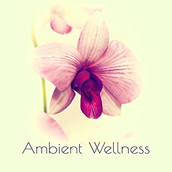Ambient Wellness – Top 15 Sounds for Spa, Background Music for Massage, Beauty Center Healing Music