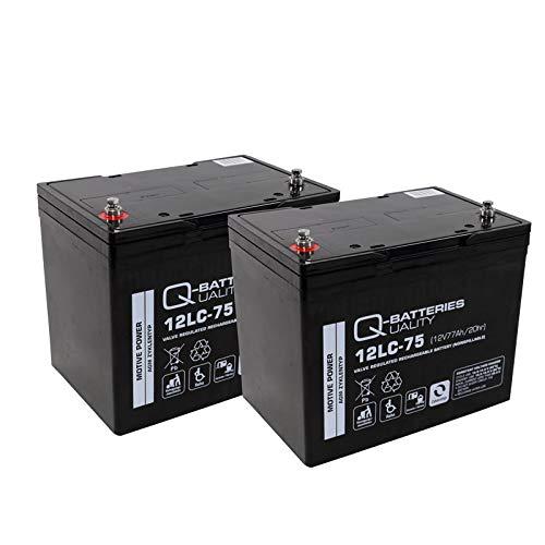 Blei Akku Batterie 2 x 12V/75Ah wie 77Ah für Rollstuhl Elektromobil Orthopedia Allround 960S