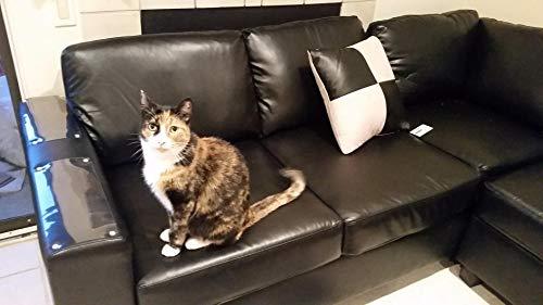PetIsay Mobili Protezioni da Gatti (Set da 4,Dimensioni:46x20.5cm), Fogli Autoadesive con Perni di Torsione, Cat Repellente per mobili - Deterrente AntiGraffio - Protezione per Divano Gatto
