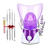Facial Steamer, Nano Ionic Face Steamer for Home Facial, Warm Mist Humidifier Atomizer, Humidifier Moisturizing Face Spa Steamer, includes Set of 4 Extraction Tools &Face Mask Brush by WKAE