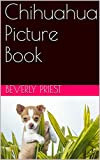 Chihuahua Picture Book (English Edition)
