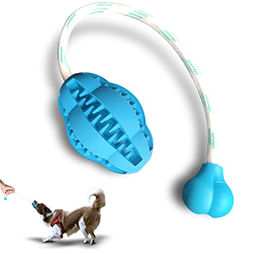 SIEWAY Upgrade Interactive Training Dog Rope Puppy Toys - Durable Teething Chew Rubber Toys with Rope - Treat Ball Reward Exercise for Pull Dental Cleaning - Puppy Tug Toys Gift for Small Dogs Breeds