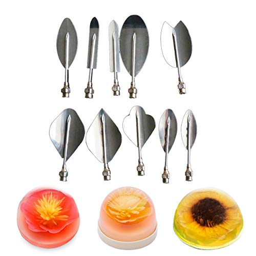 Joyeee 3D Gelatin Art Tools, Set of 10 Pieces Stainless Steel Jelly Cake Needles Pudding Pastry Nozzles with One 20ml Syringe 3D Jelly Flower Cake DIY Tool Kit Gelatin Cake Decoration Tool