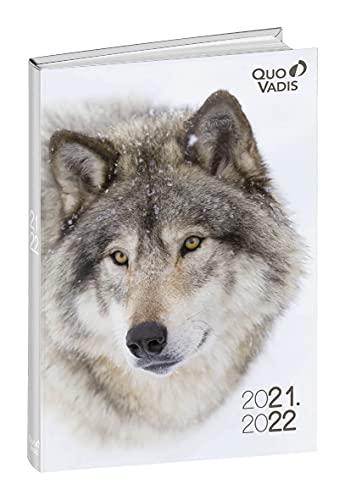 Quo Vadis – Agenda diaria con cabeza de lobo –...