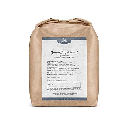 Krauterie Gänsefingerkraut Silberkraut in hochwertiger Qualität, frei von jeglichen Zusätzen, als Tee oder für Pferde, Hunde und Katzen (Potentilla anserina) – 1000 g