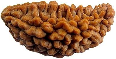 Balaji Ecomm Wooden 1 Mukhi Rudraksha(3X1.8X1.2Cm, Brown)