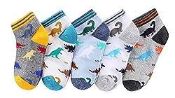 4. CHUNG Boys Low Cut Dinosaur Ankle Socks (5 Pairs)