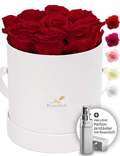 Rosenlieb Rosenbox Weiß mit 9 Infinity Rosen (3 Jahre haltbar)| Echte konservierte Rosen | Flowerbox Inkl. Grußkarte | Geschenk für Frau Freundin Geburtstag Hochzeitstag Weihnachten Valentinstag