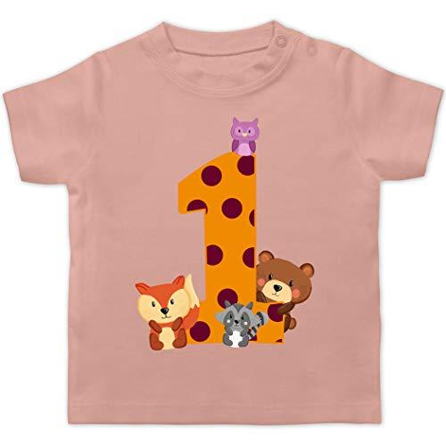 Geburtstag Baby - 1. Geburtstag Waldtiere - 12/18 Monate - Babyrosa - Geburtstag Baby 1 Jahr mädchen Shirt - BZ02 - Baby T-Shirt Kurzarm