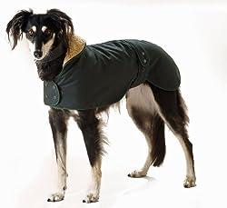 Beste Whippet-Mäntel, um ihn bei kaltem Wetter warm zu halten