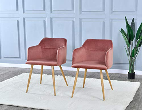 Dining Room Chairs Set of 2 - Upholstered Armchairs Accent Chairs for...
