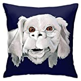 ZHUHOO Falkor - Neverending Story - Costume Shirt Bedroom Couch Sofa Square Pillow Case Home Decorative Throw Pillow Covers 18x18 Inch