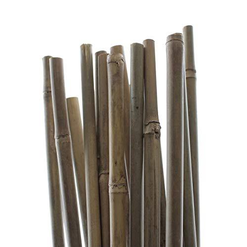 PLANT!T 5\' Paletti in bambù Plant IT (150 cm) -Pacco da 25 Set, Beige, 152x3x6 cm