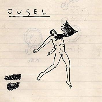 Ousel