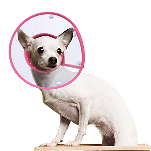 PETBABA Dog Cone Collar in Recovery, Clear Elizabethan Not Block Vision, Soft Padded E-Collar...