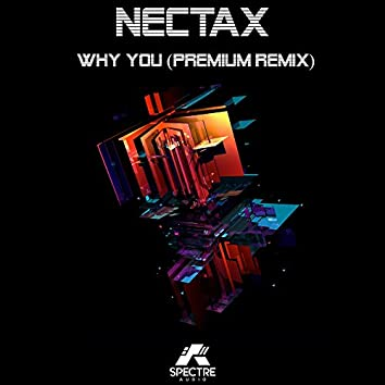 Why You (Premium Remix)