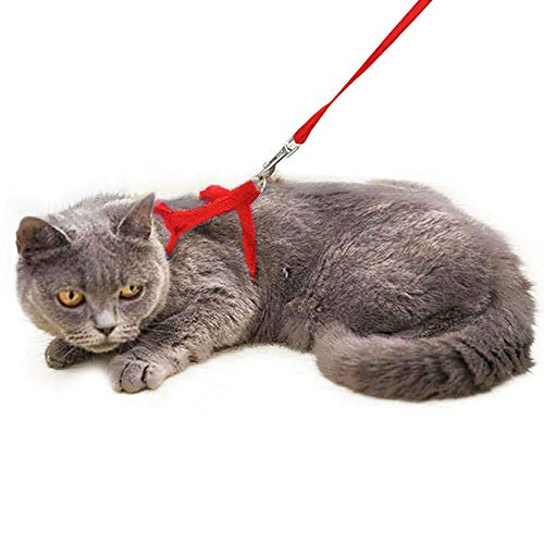 Sadocom Escape Proof Cat Set of Harness and Lead -Soft Adjustable Nylon Leash - Best for Kitten Rabbits Puppy Walking (Red)