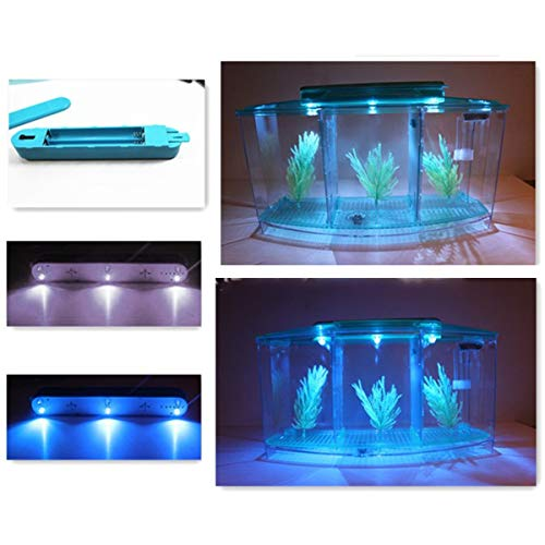 Winnfy Kit de acuario de acrílico para tanque de peces con iluminación LED y filtración incluida para varios peces tropicales pequeños