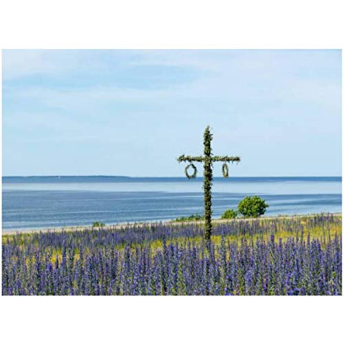 DIY Paint by Numbers Maypole in a Blossom Blue Field by The Coast in Sweden for Adults Kids Beginners Painter Colorful Oil Paintings Gift Kit with Paintbrushes 16x20inch