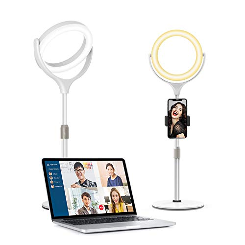 8' Desk Ring Light with Stand for Laptop Computer Zoom Call Video Conference Lighting, Evershop Webcam Lighting for iPhone/Camera Photo Lighting/Makeup/Online Meeting/YouTube