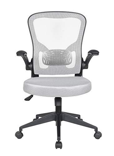 Requena Ergonomic Desk Chair, Mesh Chair with Flip-up Armrest & Lumbar Support, Computer Office Chair, Adjustable Height BOC116 (Grey)