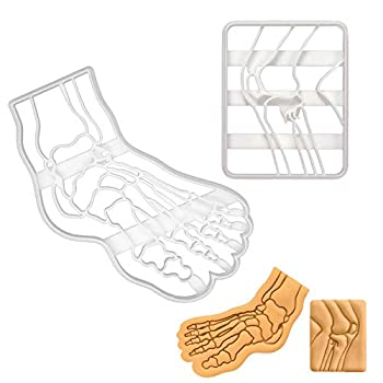 Set of 2 Knee and Foot Bone cookie cutters  Designs  Knee Bone X-Ray and Human Foot Bone X-Ray  2 pieces - Bakerlogy