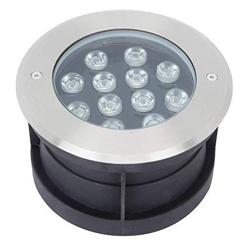 Jacksking AC12V LED wasserdichtes Pool-Licht, IP68 Unterwasserlampe für Park-Brunnen-Swimmingpool-Dekor-Licht-Aquarium beleuchtet Brunnen-Dekorationen(12W Weiß)
