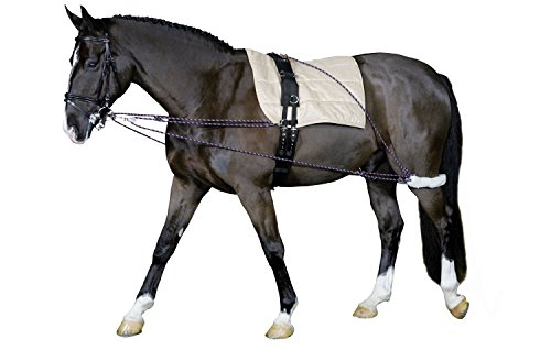 Cheval Longierhilfe Bodenarbeit Ausbildung Pony und Kleinpferde- Longiersystem Warmblut Longier-und Trainingssystem Longieren Hilfszügel