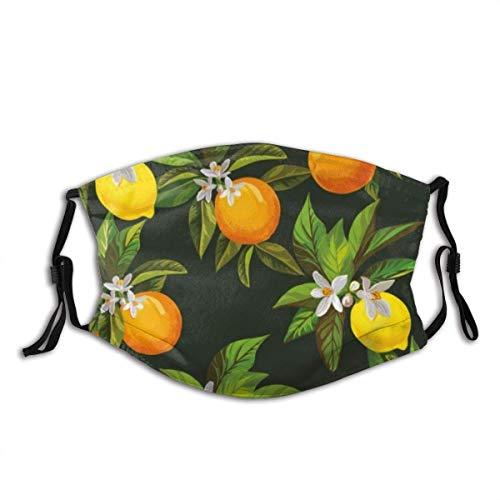 Orange Frucht gezogen Likör Zitrus Muster Zitrone Fitness Vintage Limonade Smoothie Bar Botanic Box Cafe Staub Gesicht Mas-Ke