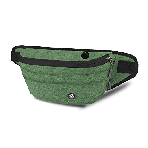 WATERFLY Fanny Pack for Men Women Water Resistant Large Hiking Waist Bag Pack for Running Walking Traveling (Green)