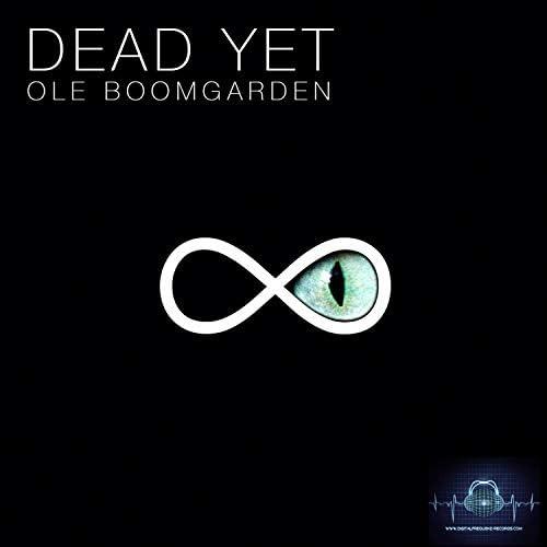 Ole Boomgarden