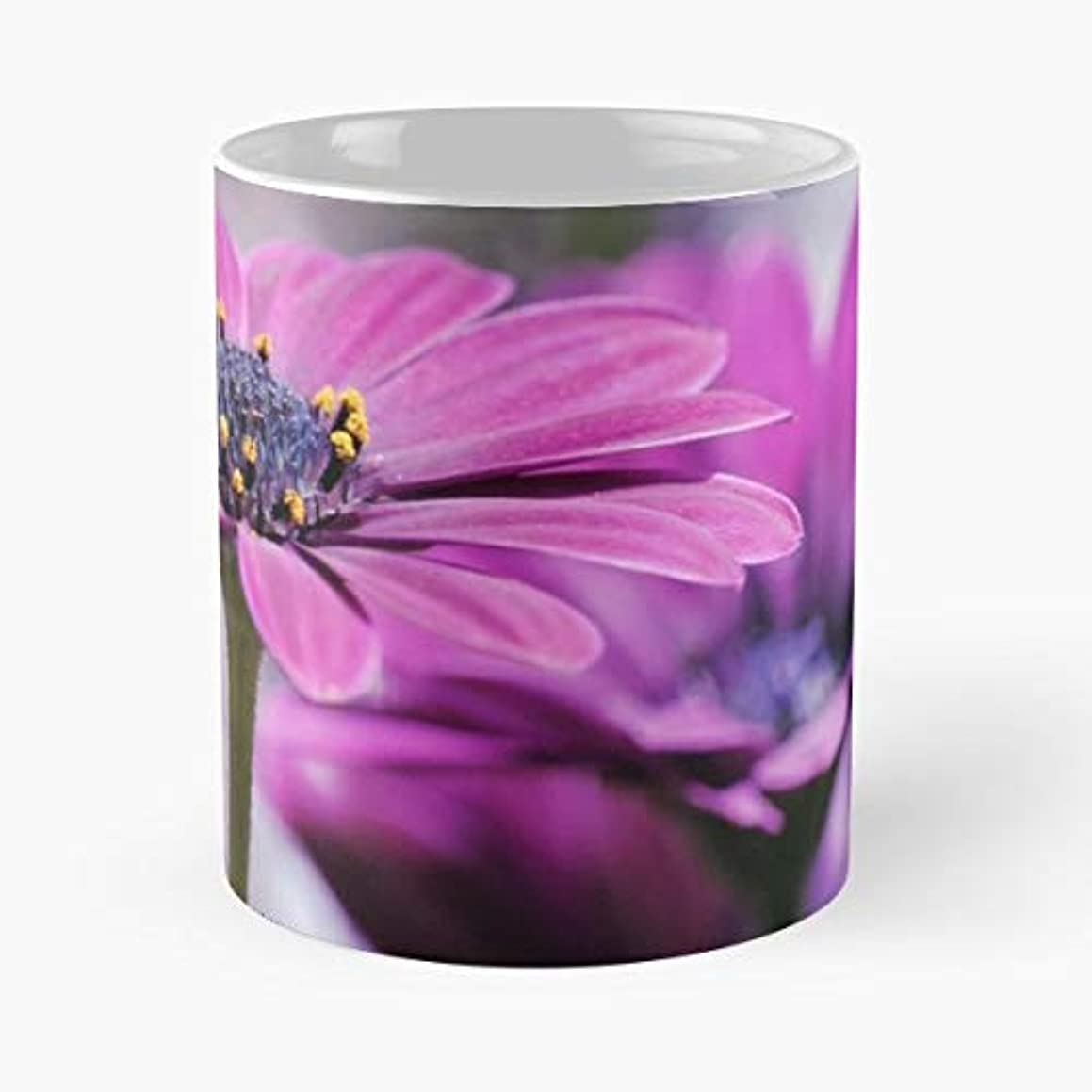 Close Up Daisy Flower Lissywitch - Coffee Mug-11 Oz,white Unique Birthday Gift-the Best Gift For Holidays.