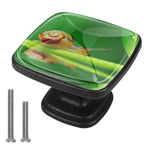 Snail On Green Leaf Garden Pool Drawer Knob for Home Cabinet Dresser Bookcase 4PCS with Screws