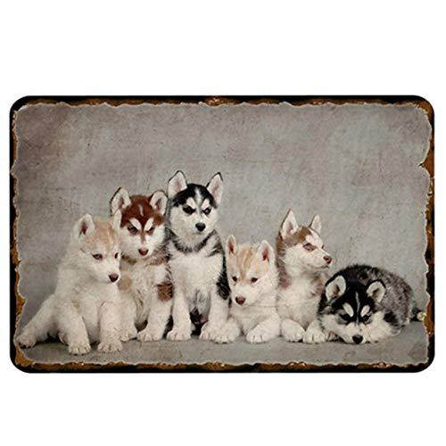 1 Piezas Perro Mascota Cartel Retro De Hojalata Tienda De Mascotas Decoración De La Pared De La Habitación De Mascotas Cartel Vintage Shabby Chic 20X30Cm