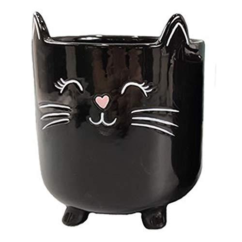 Maceta para plantas suculentas macetas de cerámica para interiores, macetas novedosas para el hogar, la oficina, el jardín (gato negro, grande, 1)