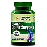 Himalayan Organics Organic Joint Support Supplement with Boswellia, Turmeric, Moringa & Alfalfa |