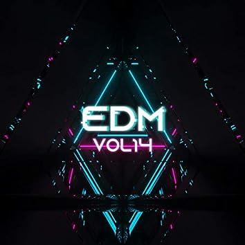 EDM, Vol.14