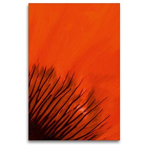CALVENDO Premium Textil-Leinwand 80 x 120 cm Hoch-Format Blütenblatt im Detail, Leinwanddruck von Brigitte Deus-Neumann