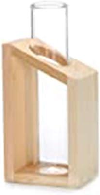 CHENYI Jarrón de Tubo de ensayo de Cristal en macetas de Soporte de Madera para Plantas hidropónicas Decoración de jardín de casa Floreros con Marco de Hierro Maceta Geométrica (C)