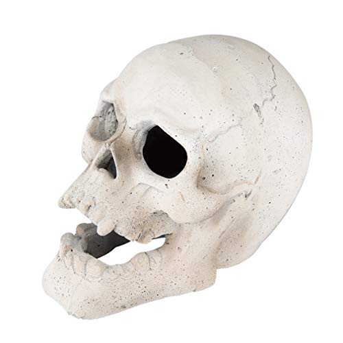 Stanbroil 9-Inch Imitated Human Skull Gas Log for Indoor or Outdoor Fireplaces, Fire Pits Halloween Decor, 1-Pack, White - Patent Pending