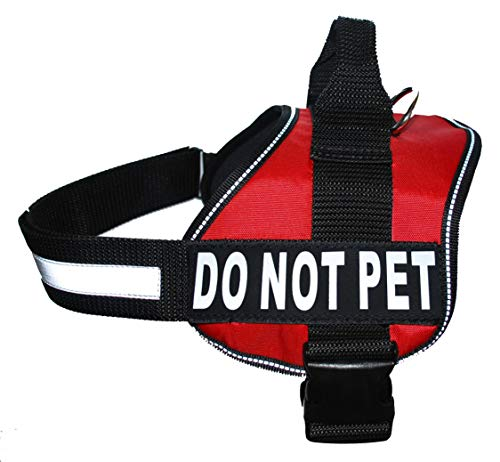 Do Not Touch Dog Harness