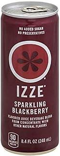 Izze Sparkling Juice Blackerry 8.4 oz [並行輸入品]