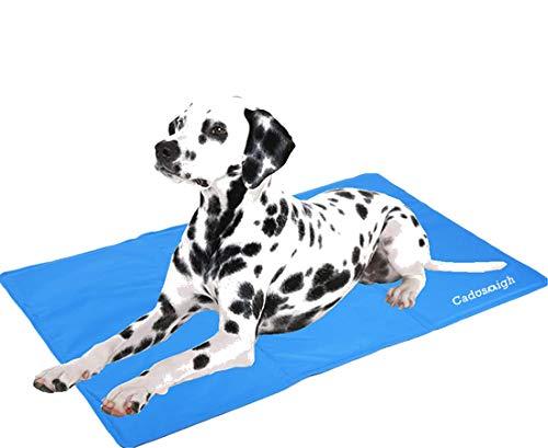 Cadosoigh Alfombra de Refrigeración Animales Nevera y Manta para Perro Fresco Cojín Azul Nevera Techo Camas de Suelo Couch Zwinger Auto(90 * 50 CM)