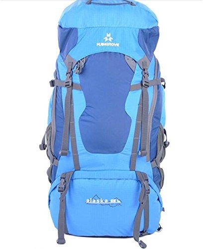 sac à dos randonnée Unisexe sacs alpinisme professionnel 65L sac à dos sac à bandoulière sac à dos Sacs à dos de randonnée ( Couleur : Bleu , taille : 65L )