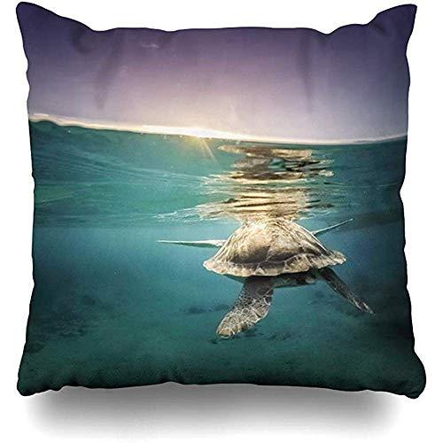 Stoel Kussens Kleine Antillen Onderwater Turtles Pelikanen Uitzicht Rond Oceaan Abc Vogel Caribisch Curaçao Nederlands Ontwerp Home Decor Quarters Vierkant 45X45Cm Kussen Cover Zippered Family Couch